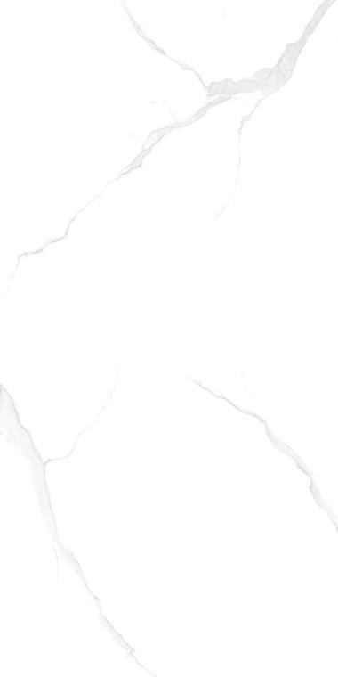SV-1L189003