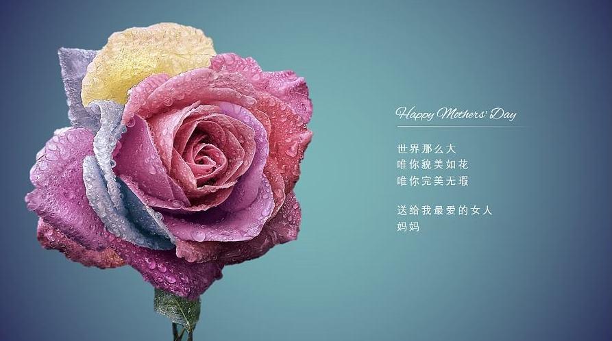 """升华陶瓷企业 以""""砖""""属的名义,给母亲专属的爱!"""